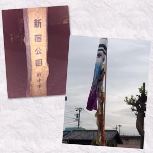 fuchushinjuku1